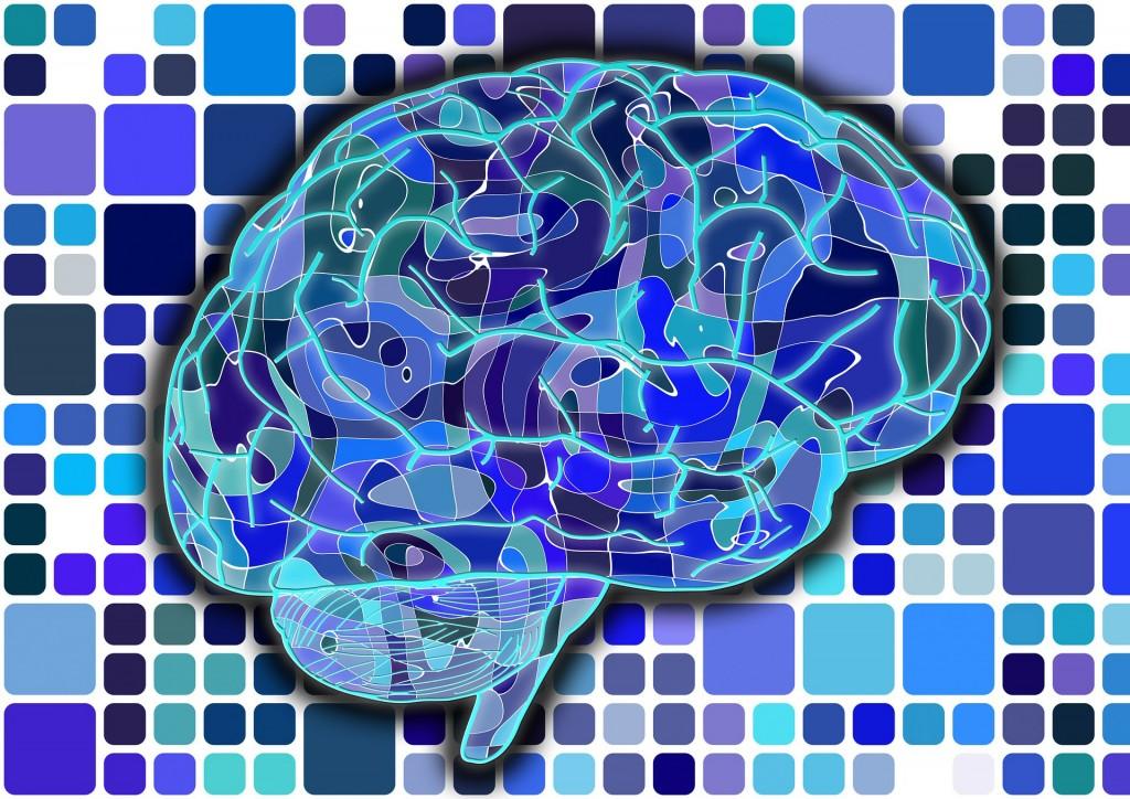 brain-951845_1920